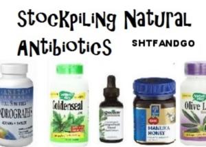 antibotics-for-survival
