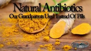 17-natural-antibiotics-our-grandparents-used-instead-of-pills