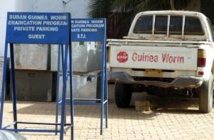 Shedding Light on NTDs: Guinea Worm Disease