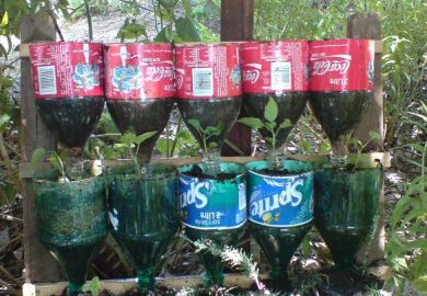 Soda Bottle Garden