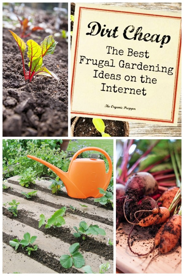frugal gardening ideas
