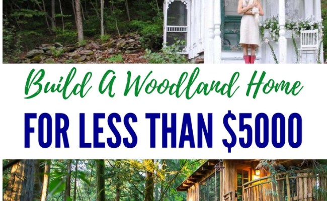 Build A Low Impact Woodland Home For Less That 5000