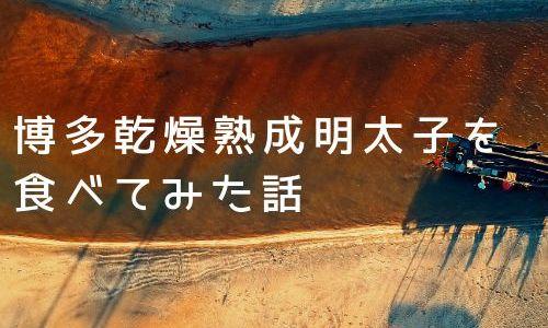 博多乾燥熟成明太子|新たな珍味を発見!!