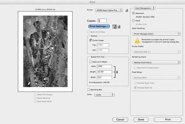 Drivers epson lq-2190 printer Windows 8 Download