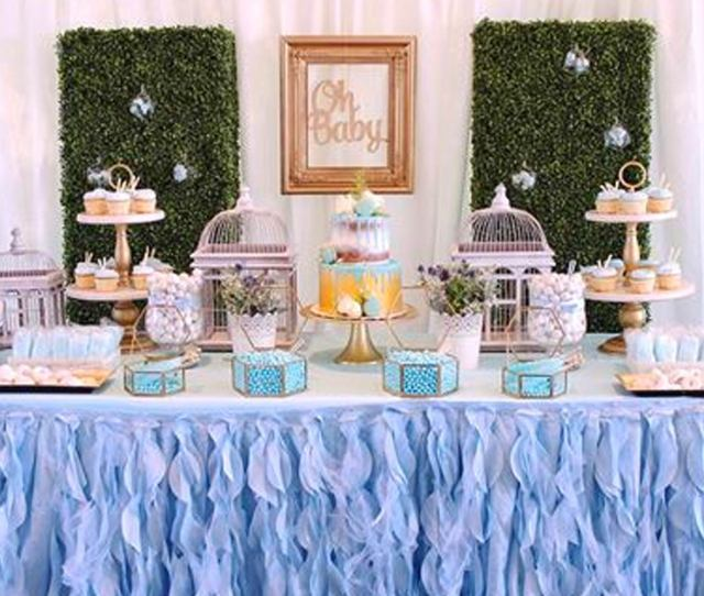 Baby Boy Baby Shower Themes Bird Theme