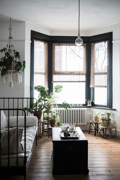 dark grey and white living room ideas old world rooms 75 delightful black photos shutterfly we love how lively all of the plants make this feel bamboo shades are also a nice natural element