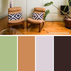 Brown And Green Color Scheme For Living Room Wood White Furniture 10 Stylish Combinations Photos Shutterfly Tan