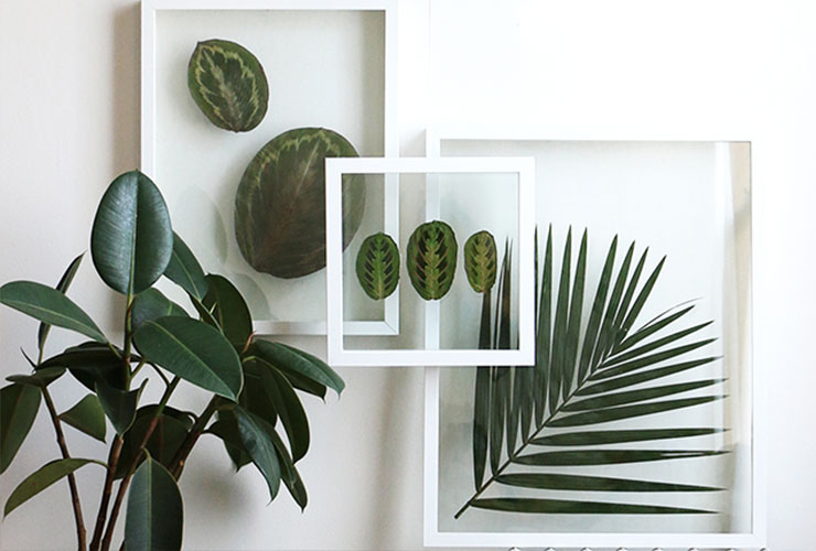 ideas for living room wall art leather sofa set 45 inspiring decor photos shutterfly 2 pressed plants