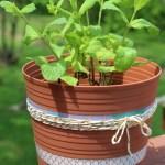 Diy Fairy Garden And Other Flower Pot Painting Ideas Shutterfly