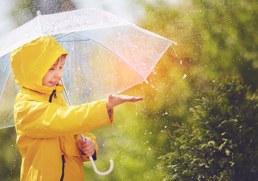 Image result for rainy season