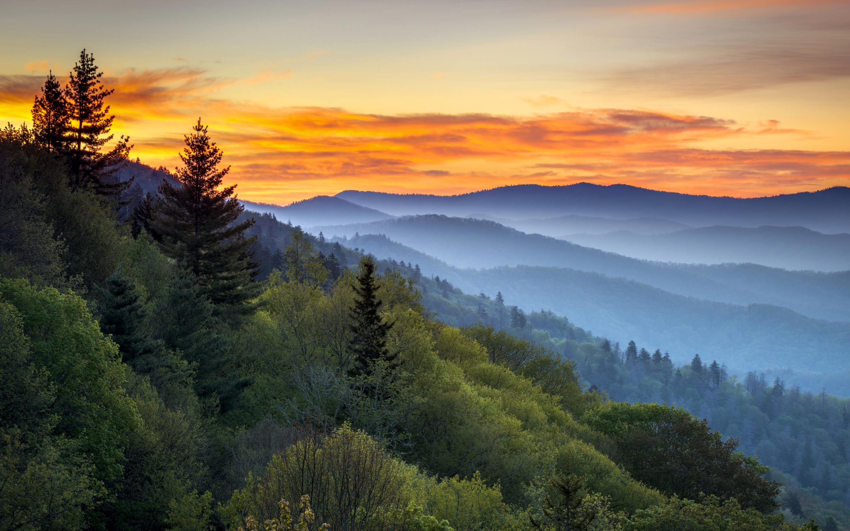 نتيجة بحث الصور عن great smoky mountains national park