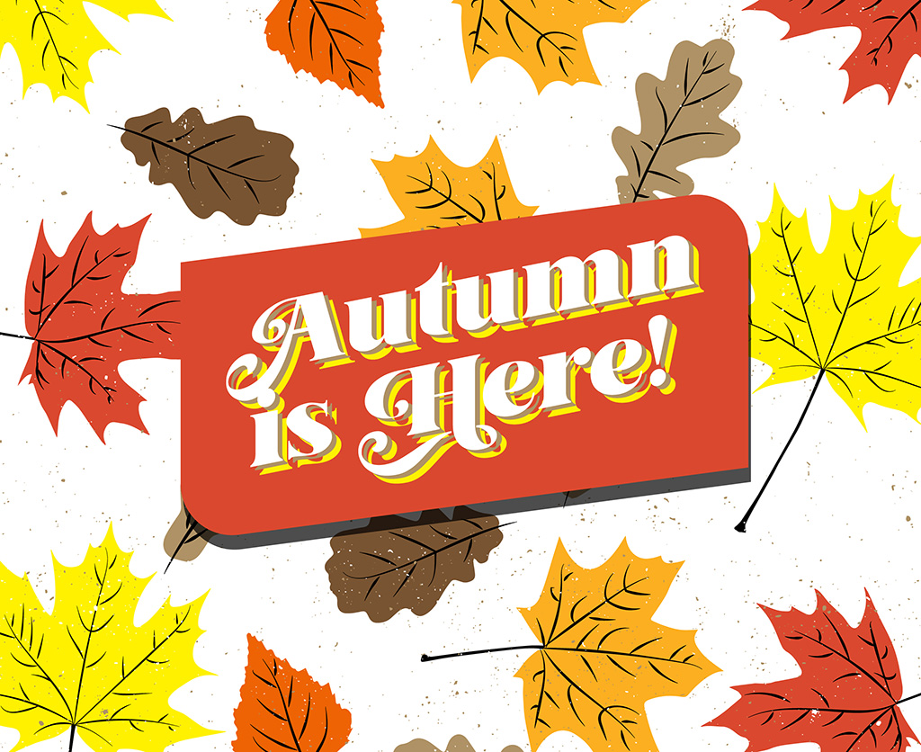 Autumn-Themed Backgrounds