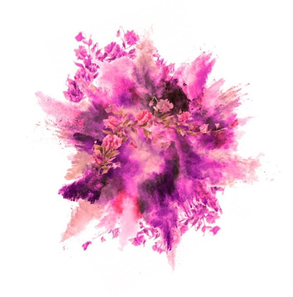 Paint Explosion with Flowers