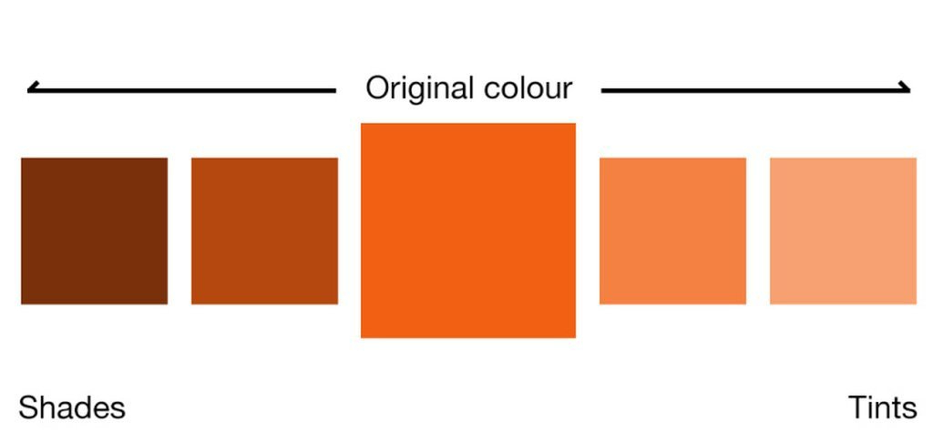 The Importance of Shades and Tints