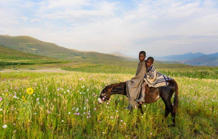 Two Basotho Boys in Lesotho, Africa