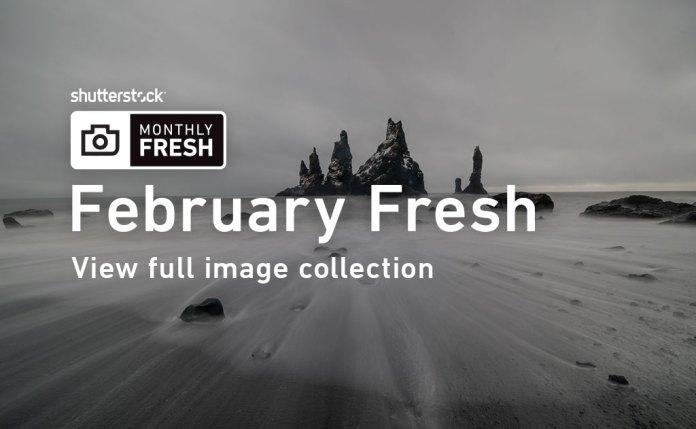 February Fresh Shutterstock Images