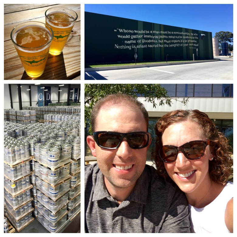 dogfish-head-brewery
