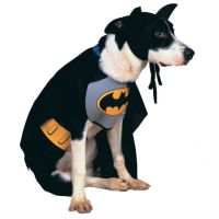 Doggy Superhero Costumes