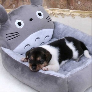 My Neighbor Totoro Dog Bed