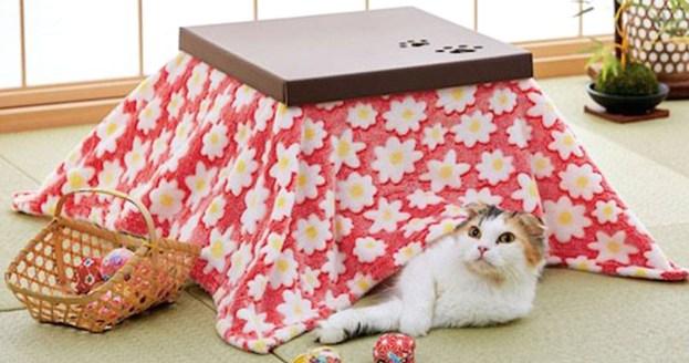Znalezione obrazy dla zapytania kotatsu