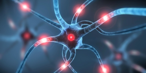 Linterruttore molecolare che spegne i sintomi delle malattie neurodegenerative  Si24