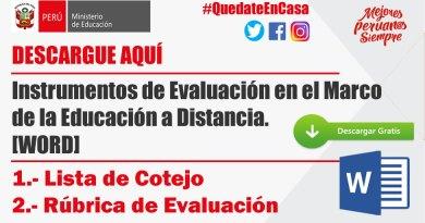 DESCARGUE AQUÍ Instrumentos de Evaluación en el Marco de la Educación a Distancia. [WORD]