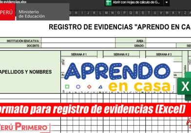 """Formato para registro de evidencias """"APRENDO EN CASA"""" (Excel)"""