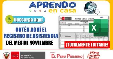 Listo para adaptar: REGISTRO DE ASISTENCIA DEL MES DE NOVIEMBRE 2020[EXCEL]