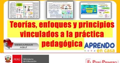 ¡IMPORTANTE! Conozca las Teorías, principios y enfoques vinculados a la práctica pedagógica [Conócelo aquí]