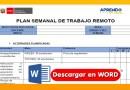 Excelente Plan Semanal de Trabajo [Word][Descarga gratis aquí]