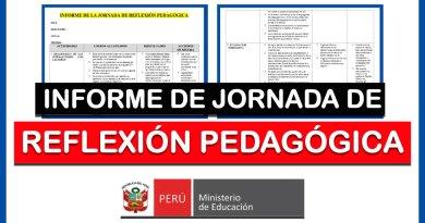 Excelente INFORME Referencial de JORNADA DE REFLEXIÓN PEDAGÓGICA [Descarga aquí]