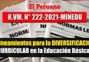 Lineamientos para la DIVERSIFICACIÓN CURRICULAR de la Educación Básica [R.VM. N°222-2021-MINEDU]