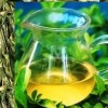 Spring Green Long Jing Dragonwell Tea