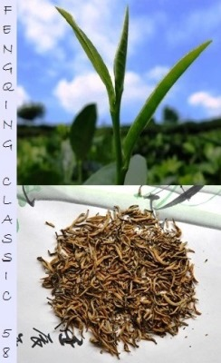 "Dianhong ""Classic 58"" Black Tea from Fengqing, Yunnan, China"
