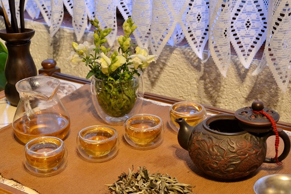 Ancient Tree White Moonlight White Tea from Yunnan's ancient tea trees - Gong Fu Style
