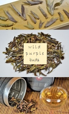 Wild Purple Buds Pu Erh Tea (Sheng)