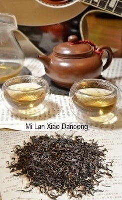 Spring Imperial Mt. Wudong Song Variety Mi Lan Xiang (Honey Orchid) Phoenix Dancong Oolong Tea