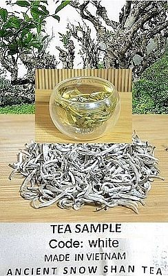 Ancient Snow Shan White Silver Needle Tea