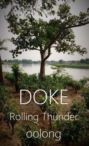 Doke Rolling Thunder Oolong Tea