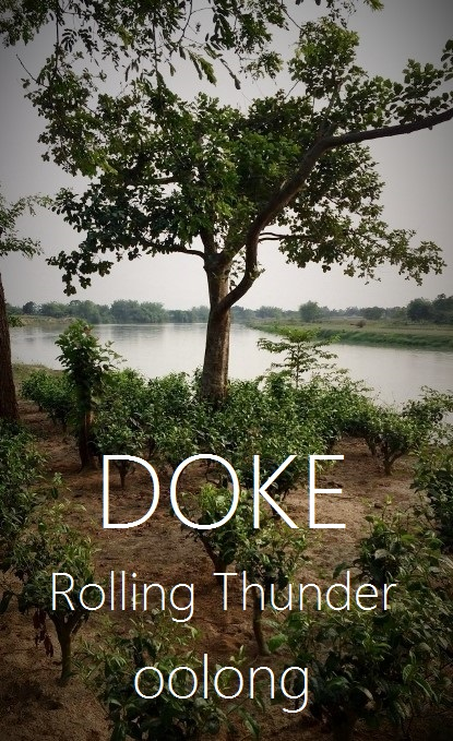 Doke Rolling Thunder Oolong Tea
