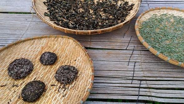 "Drying ""White Moonlight Buds"" and "" Honey Hill Sheng Pu Erh Tea"" in Xiengkhouang, eastern Laos."