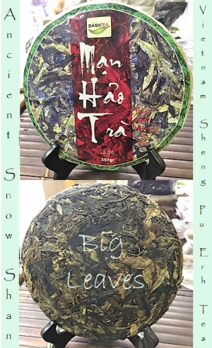 Ancient Snow Shan Big Leaves Sheng Pu Erh Tea