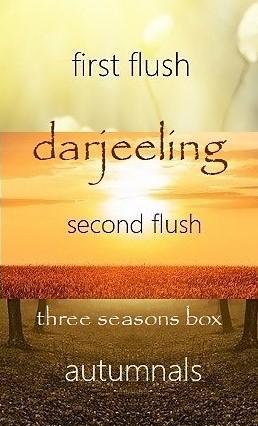 6 Darjeeling teas from 3 seasons in 1 box