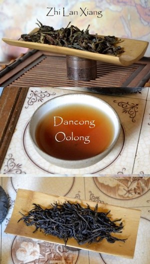 Zhi Lan Xiang Dancong Oolong Tea