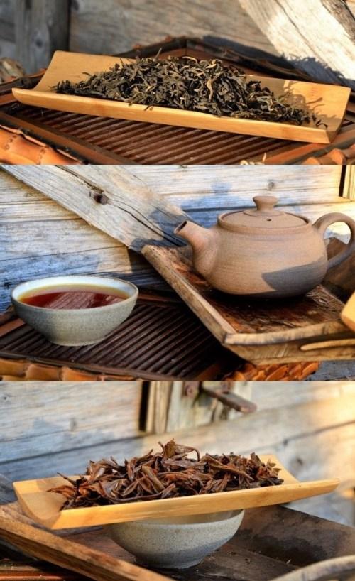 Jin Hao Dian Hong Cha Yunnan Black Tea from organic tea garden in southern Yunnan