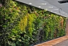 Usaha Modal Kecil Untung Besar Bisnis Instalasi Taman Vertikal