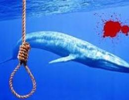 E tmerrshme! Ja rrefimi i 14 vjecares nga Gjirokastra per lojen Balena Blu..