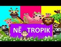 Kenge Per Femije - Ne Tropik nje gjiraf me rroba banjo dhe majmuni simpatik Ne tropik o ne tropik po kercenin makarena Edhe femijet pau pa, papagalli