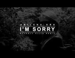 I'm Sorry - Arilena Ara (Lyrics)