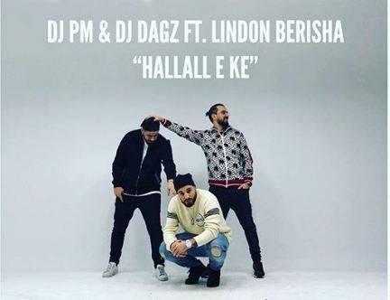 DJ PM & DJ Dagz ft. Lindon - Hallall e ke (teksti)